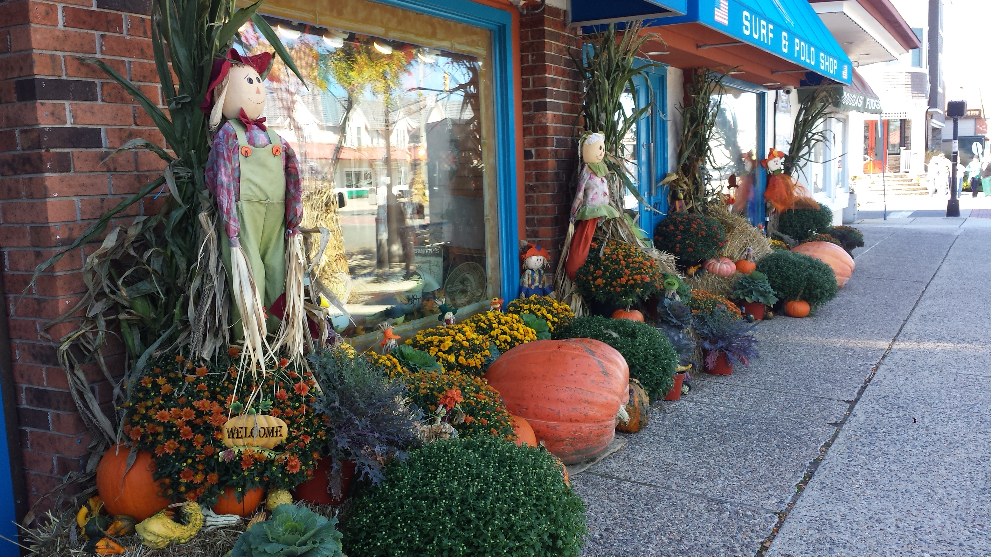 Top 10 Things To Do At The Shore This Fall