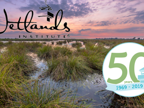 The Wetlands Institute Celebrates 50 Years of Coastal Conservation