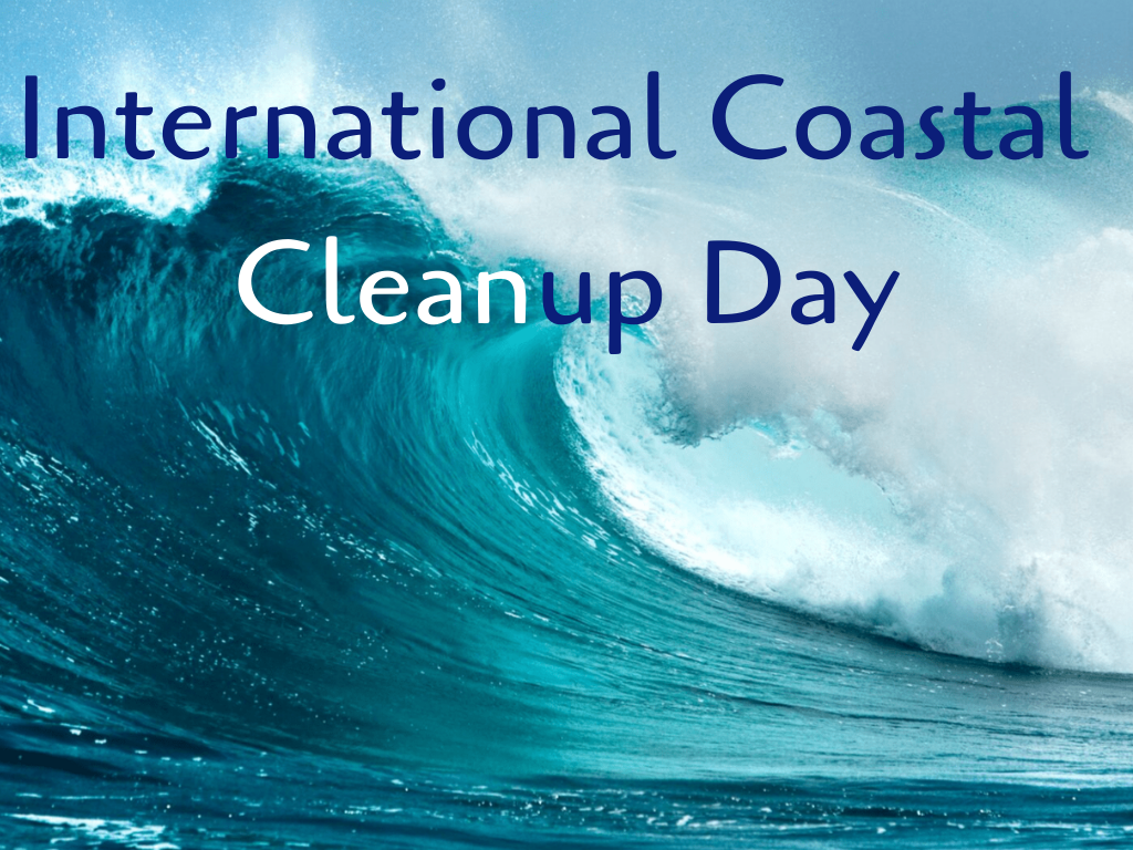 Protect the beach: international coastal clean up day