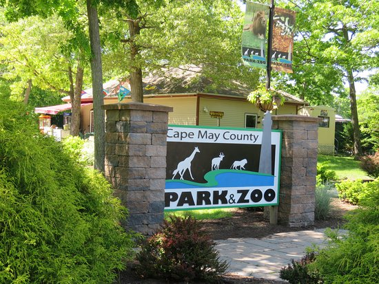 Things To Do in Cape May - Cape May County Park and Zoo