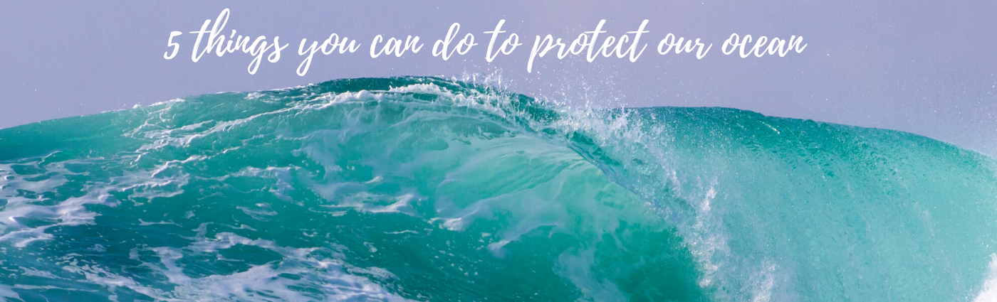 5 things you can do to protect our ocean