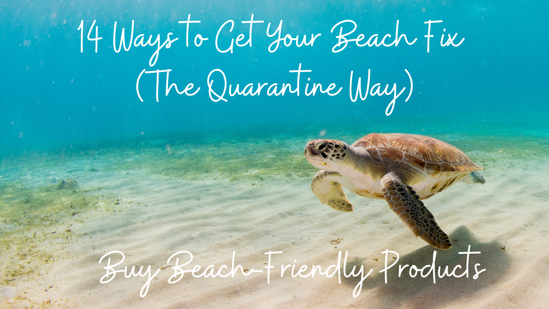 14 Ways to Get Your Beach Fix (The Quarantine Way) – #8 Buy Beach-Friendly Products